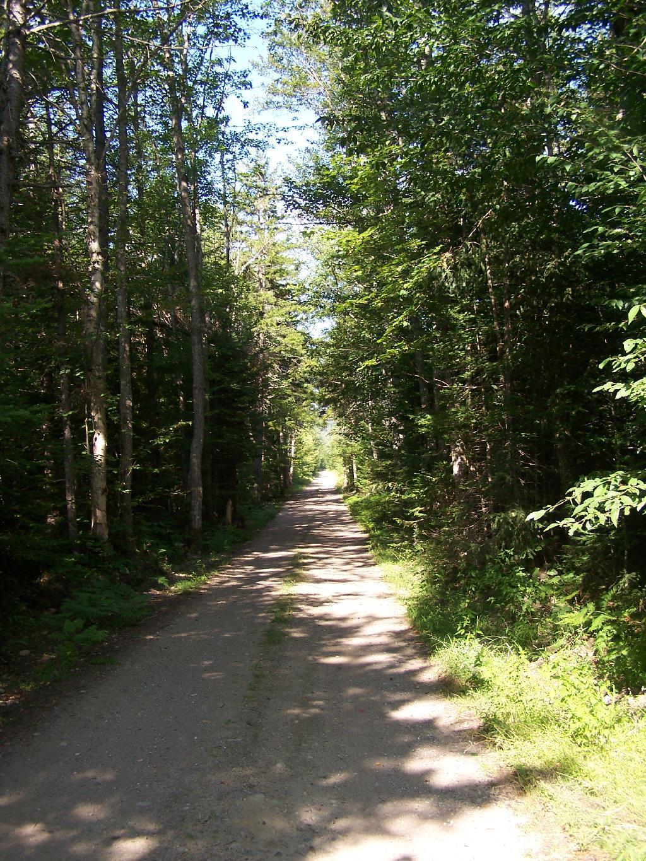 Camping at Horseshoe Lake, Aug 12 – Andy Arthur org