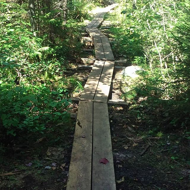 Photo: Before the wilderness boundary there is this great boardwalk