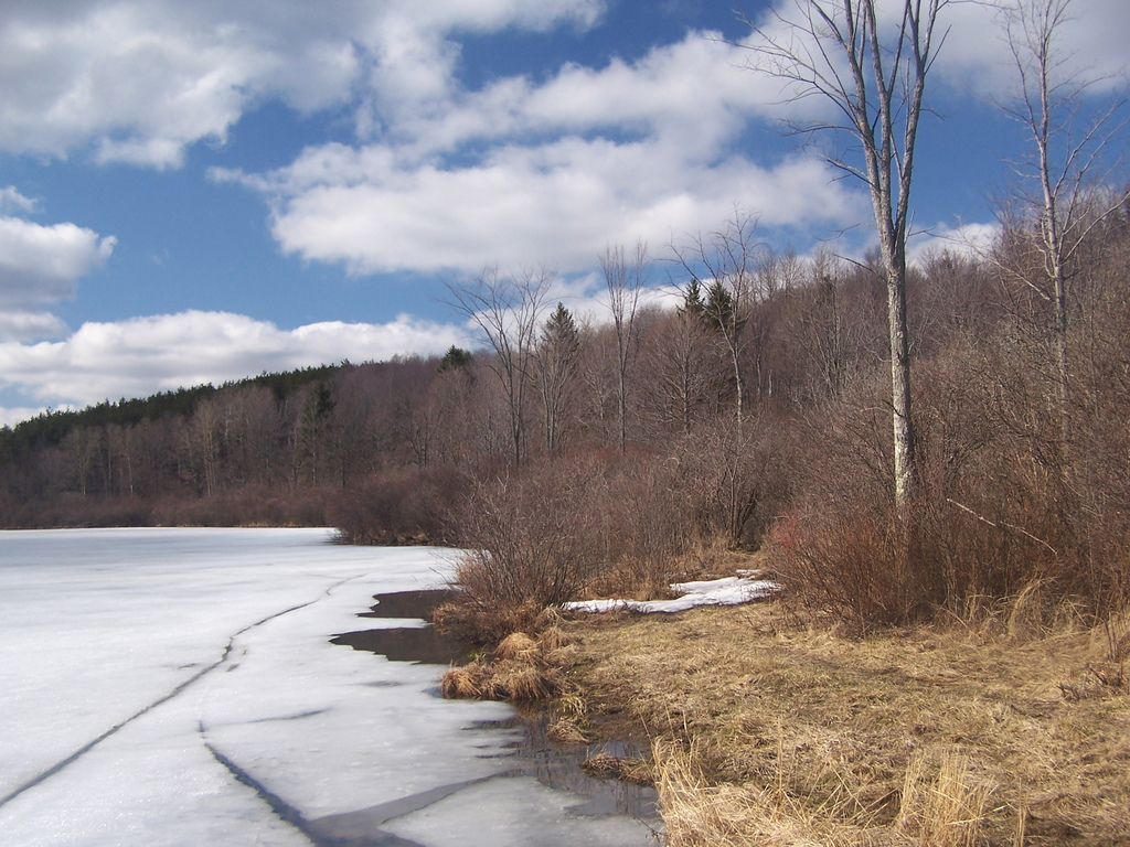 Photo: Fawn Lake Ice