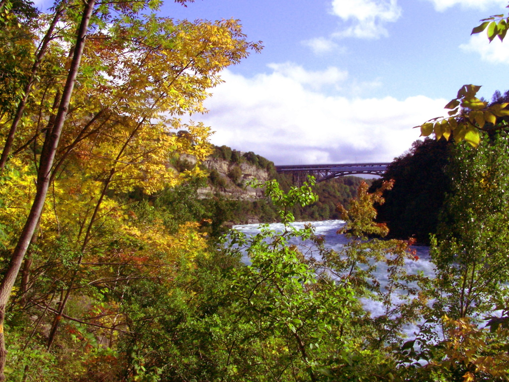 Photo: In the Niagara River Gorge
