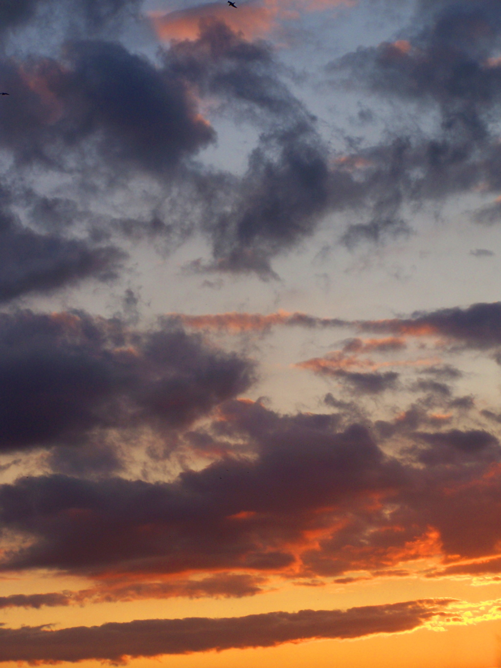Photo: Sunset's Clouds