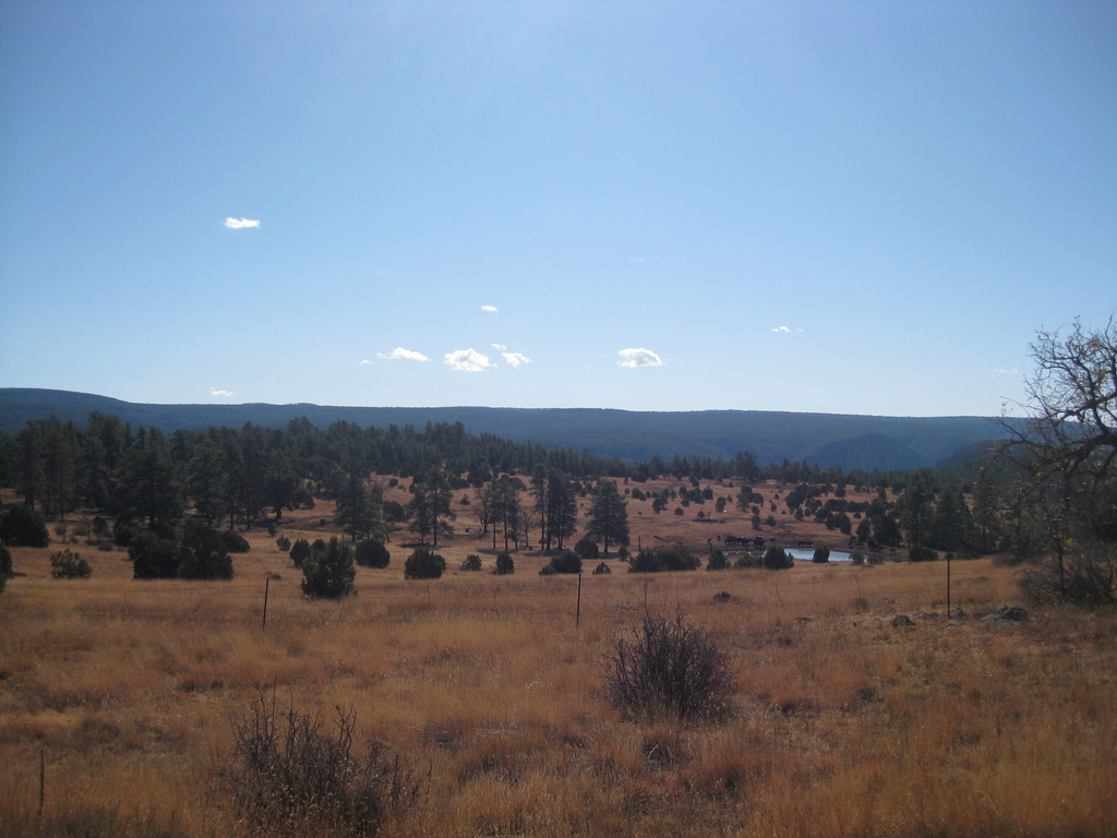 Photo: Public Grazing Lands