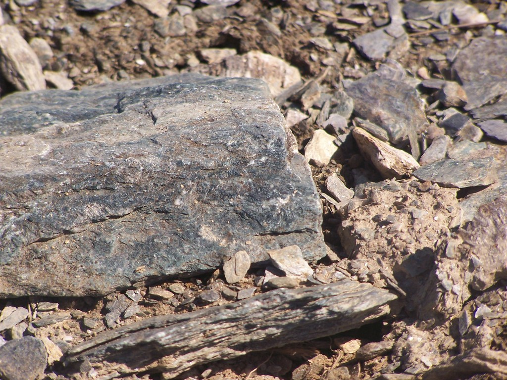 Photo: Rocks Along the Taconic Crest Trail