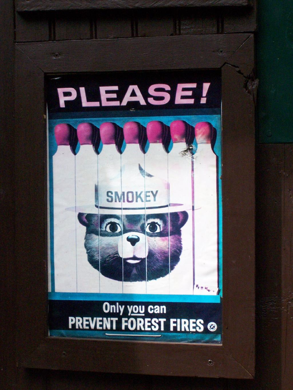 Photo: Only You Can Prevent Forest Fires