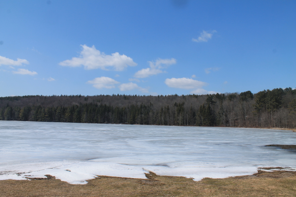 Photo: Frozen Bowman Lake