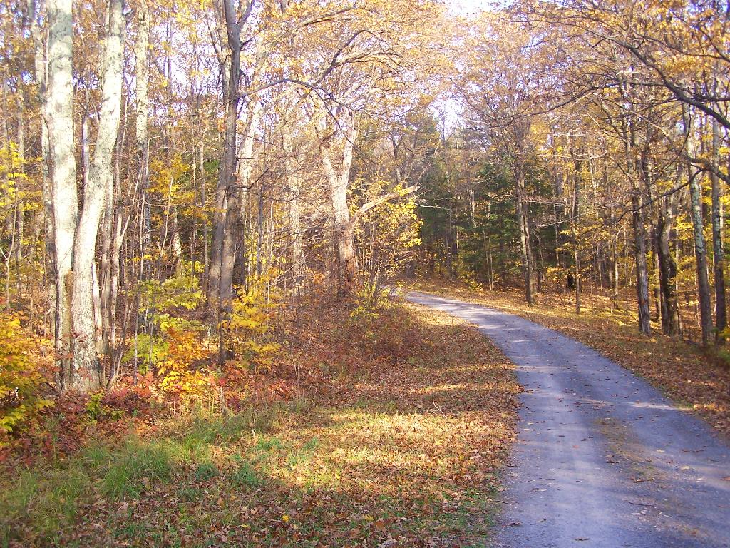 State Truck Trails and Forest Preserve Roads Over A Half Mile