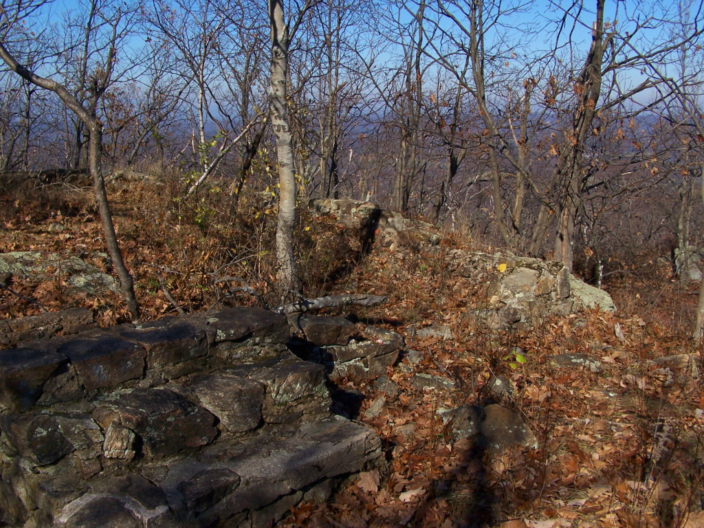 Photo: Remains of Old Rangers Cabin