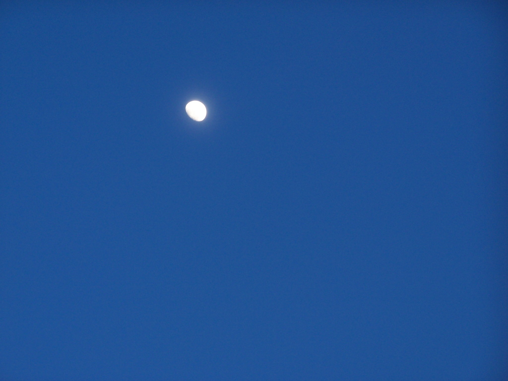 Photo: Almost a Full Moon – Andy Arthur.org
