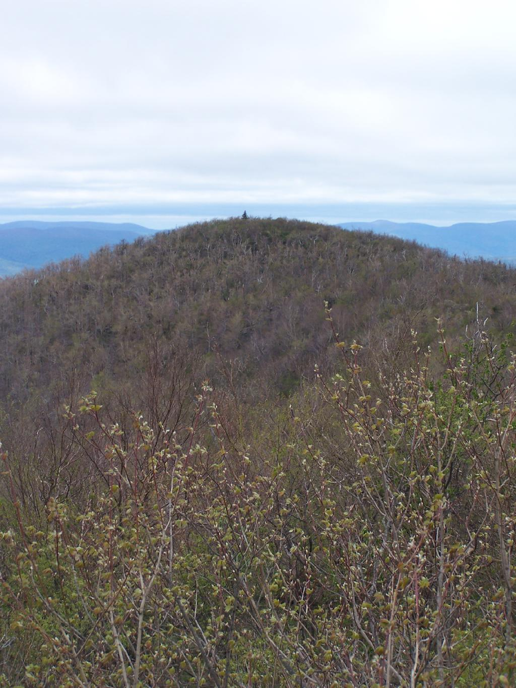 Photo: Camel's Hump