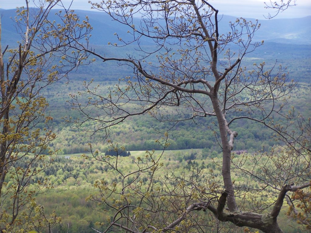 Photo: Catskill Mountain Valley