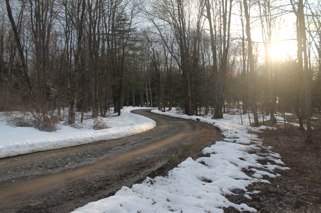 Photo: S Curve in Balsam Pond Road