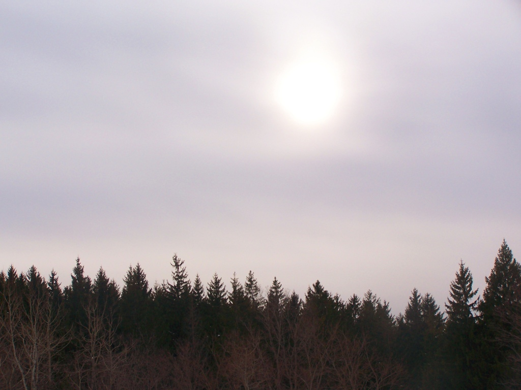Photo: Sun Peaking Thru the Haze