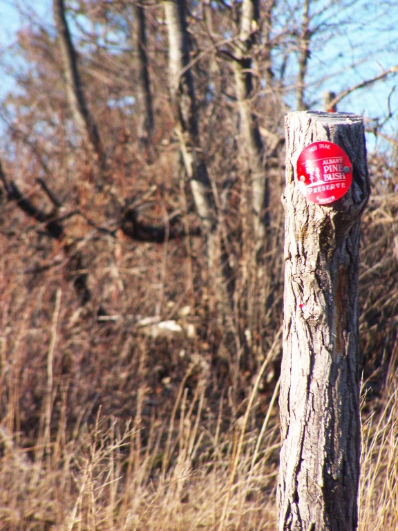 Photo: Red Trail Marker