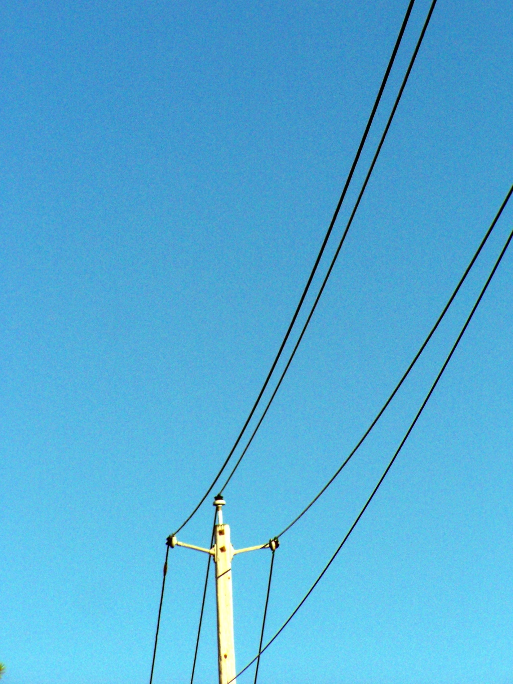 Photo: Power Line