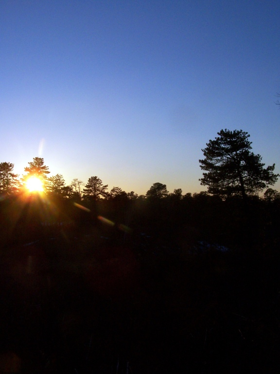 Photo: Watching Sunset from Blueberry Hill