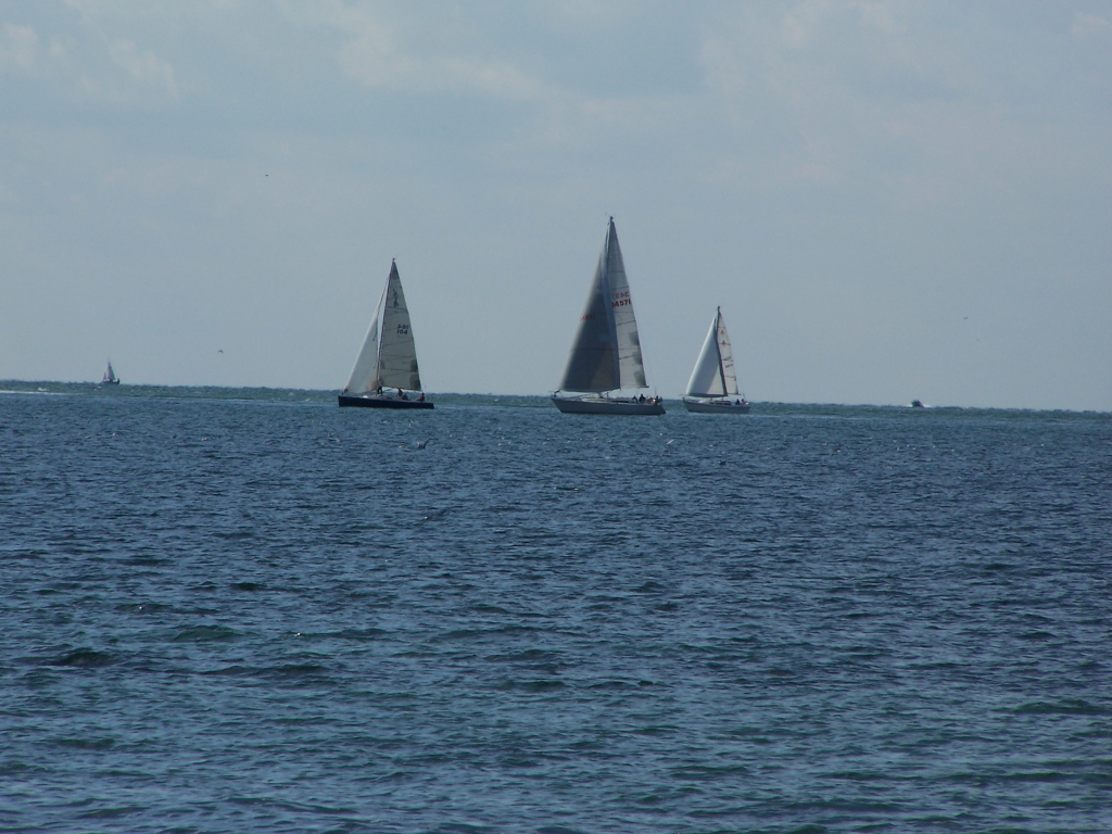 Photo: Sailboats