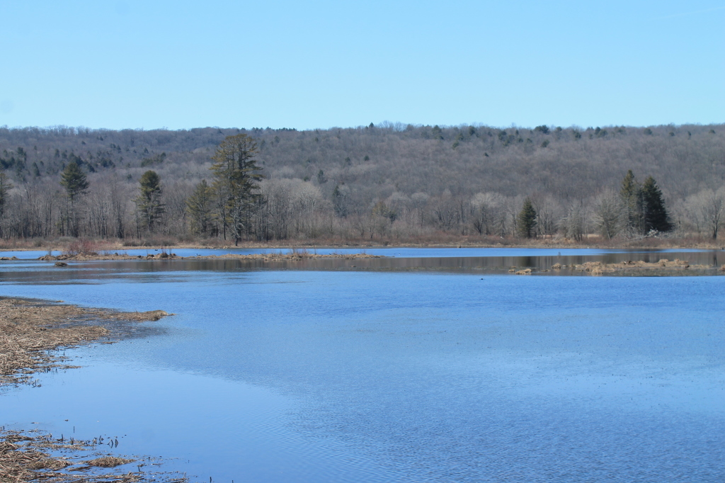 Photo: Whitney Point Reservior