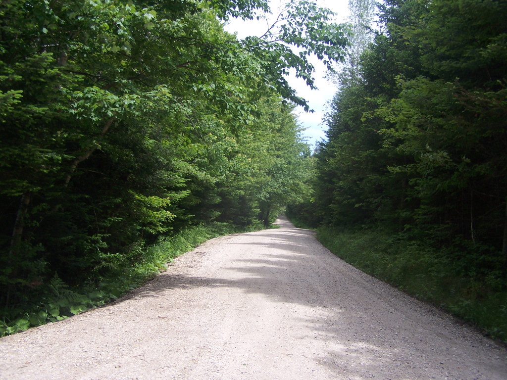 Photo: Recently Resurfaced Forest Road 71