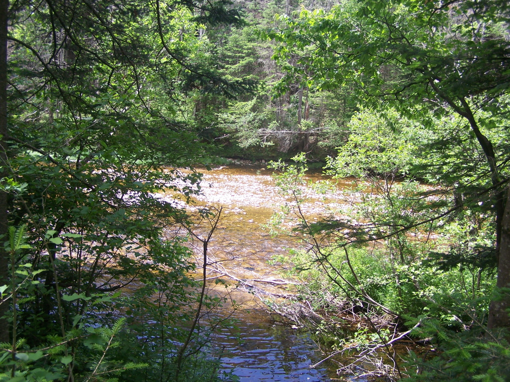 Photo: Deerfield River As Seen from Airfield Camping Area