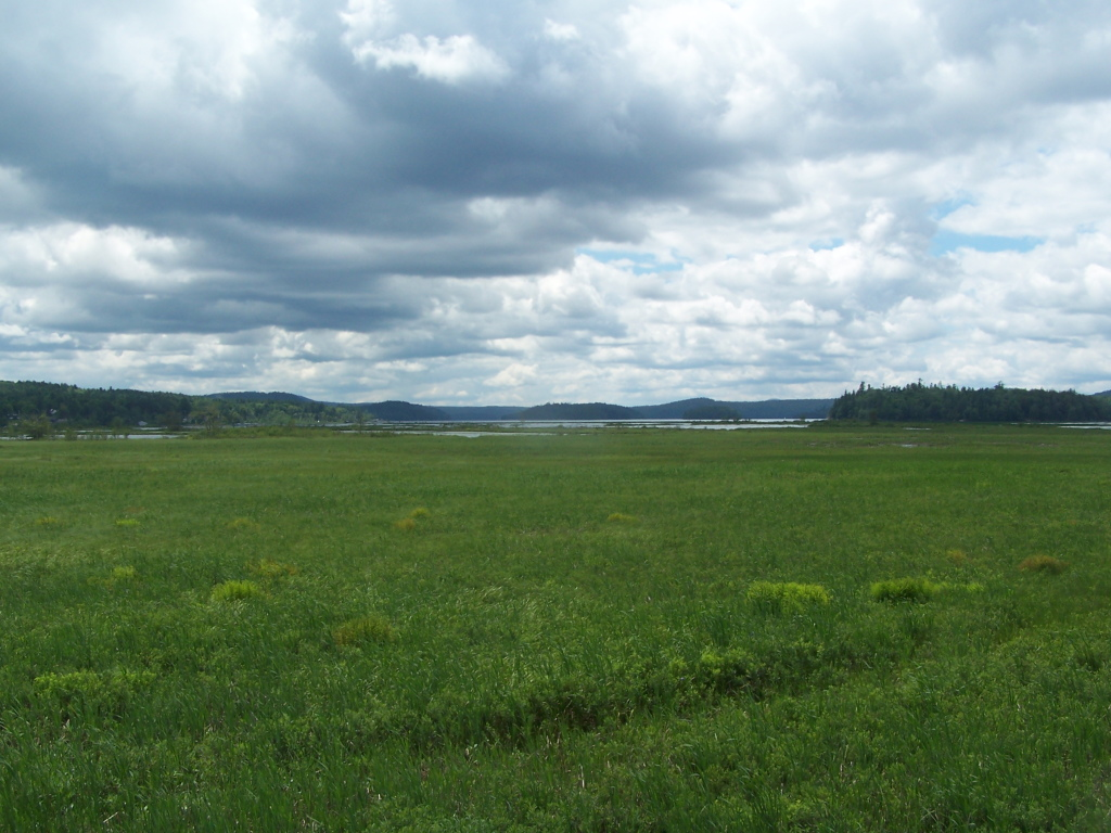 Photo: Tupper Lake