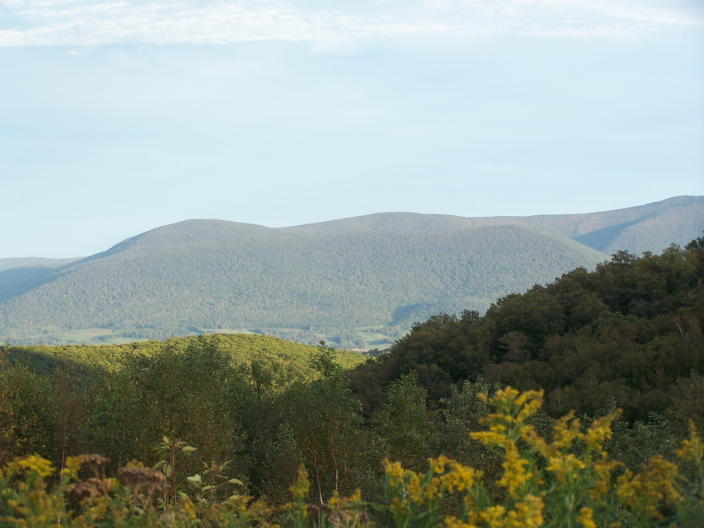 Photo: Mount Greylock Reservation