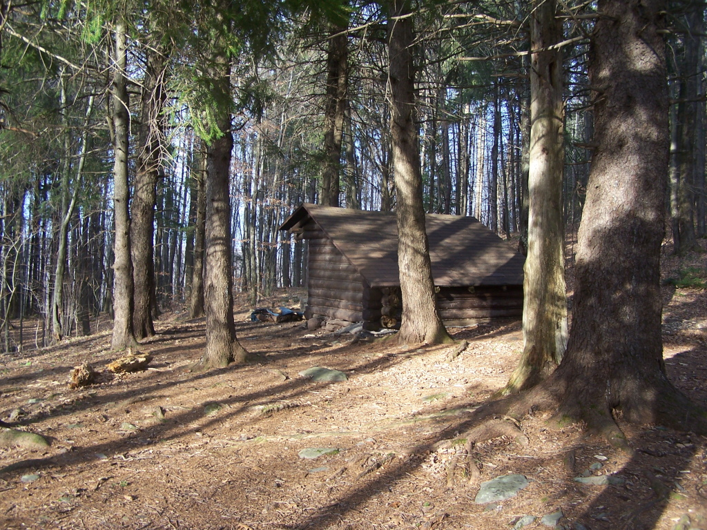 Photo: Elm Ridge Lean-To