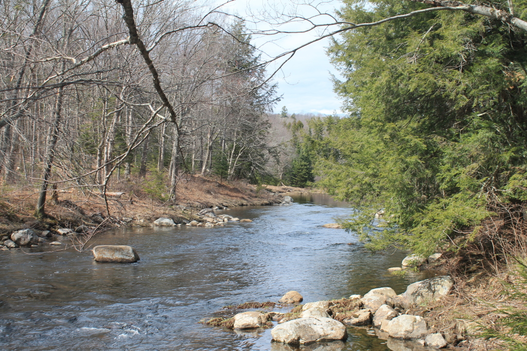 Photo: East Stony Creek