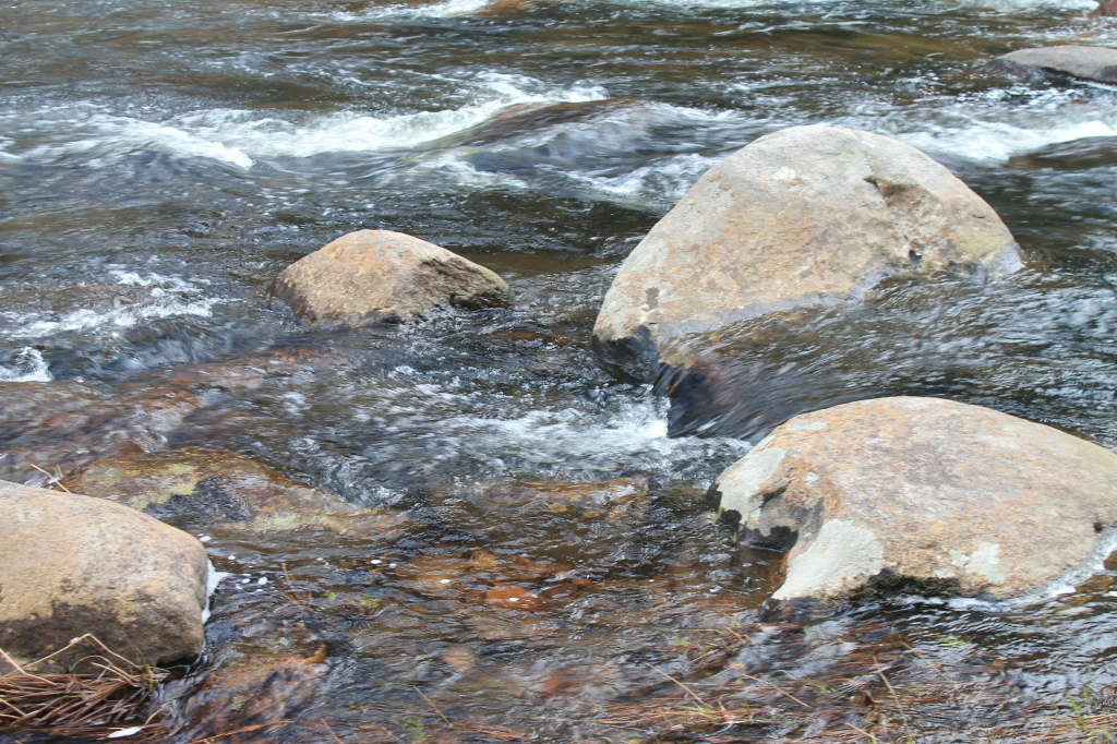 Photo: Stones in East Stony Creek