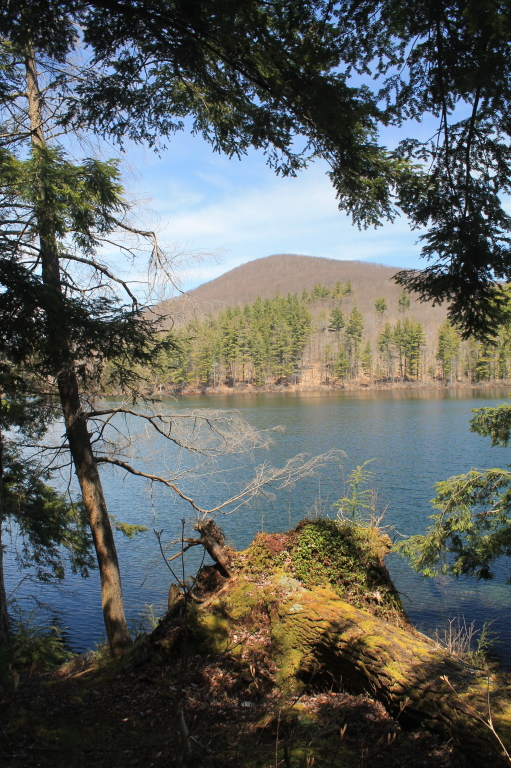 Photo: Woods Lake and Little Cat Head Mountain