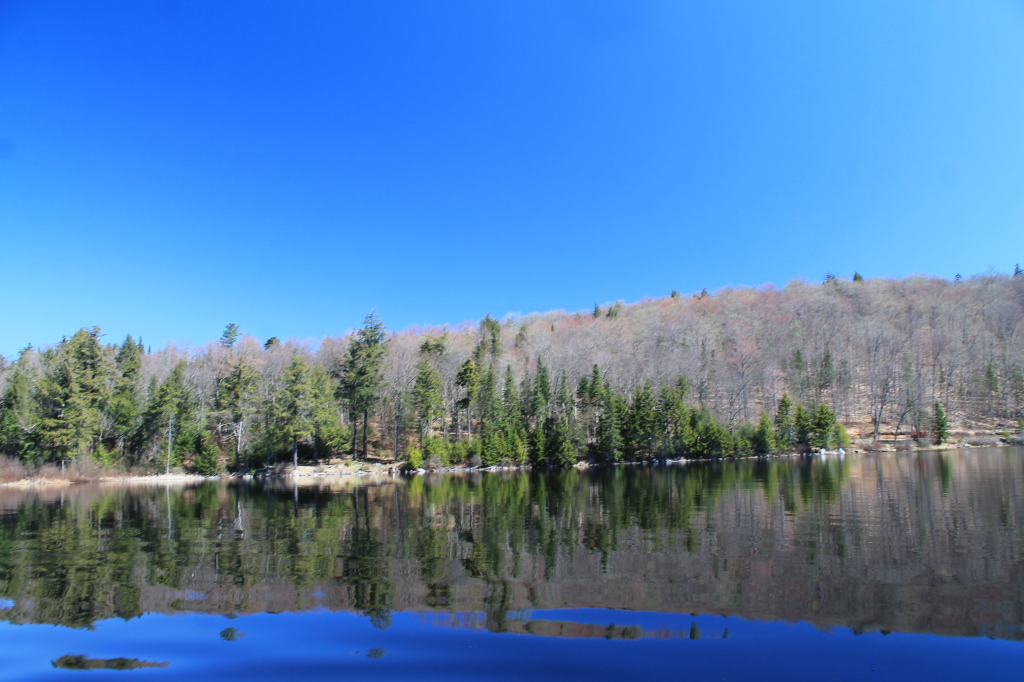 Photo: Huntley Pond