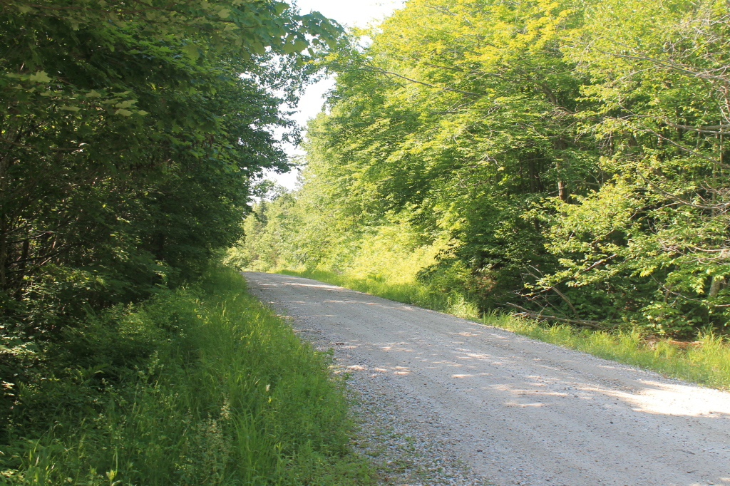 Photos: Forest Road 71 (Jun 17, 2012)