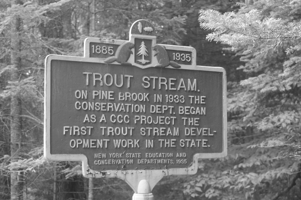 Photo: Beaver Creek Trout Stream Sign