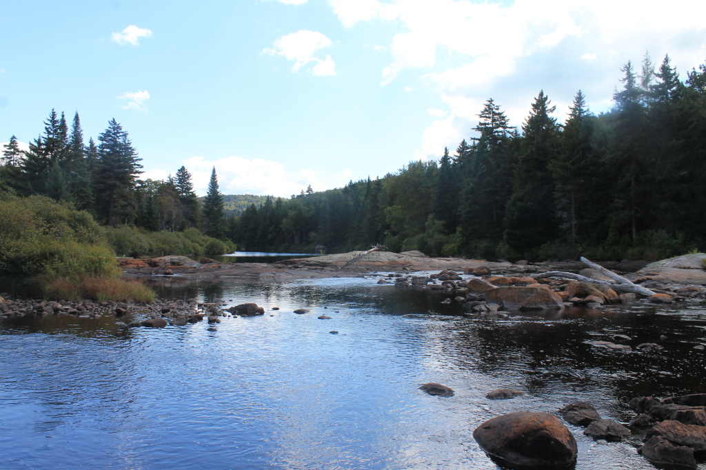 Photo: Natural Rock Dam on Moose River