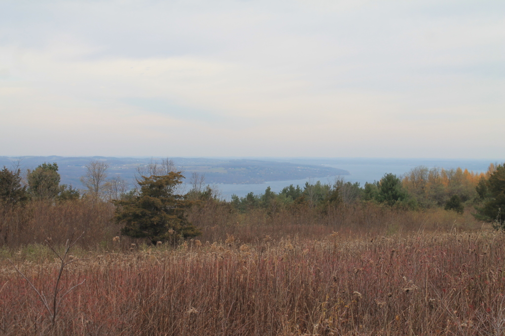 Photo: Canandaigua Lake
