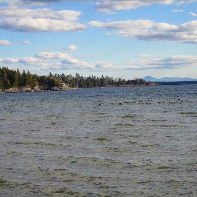 Photo: Long Point with Green Mountains in background