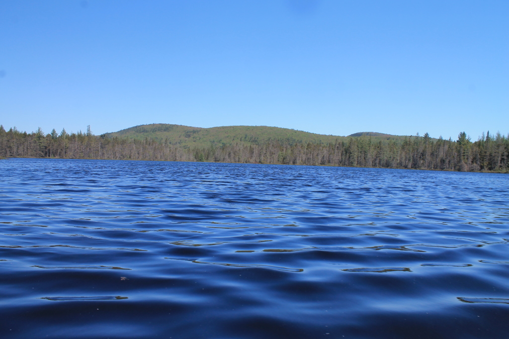 Photo: Mitchells Pond Mountain from Helldiver Pond