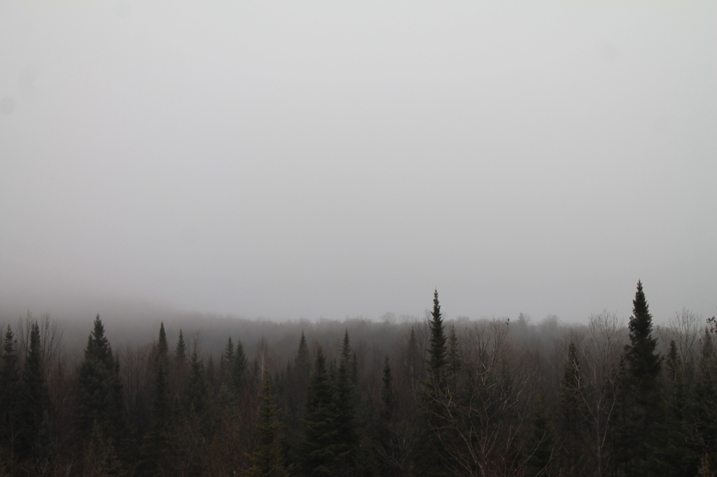 Photo: Mount Adams in the Fog
