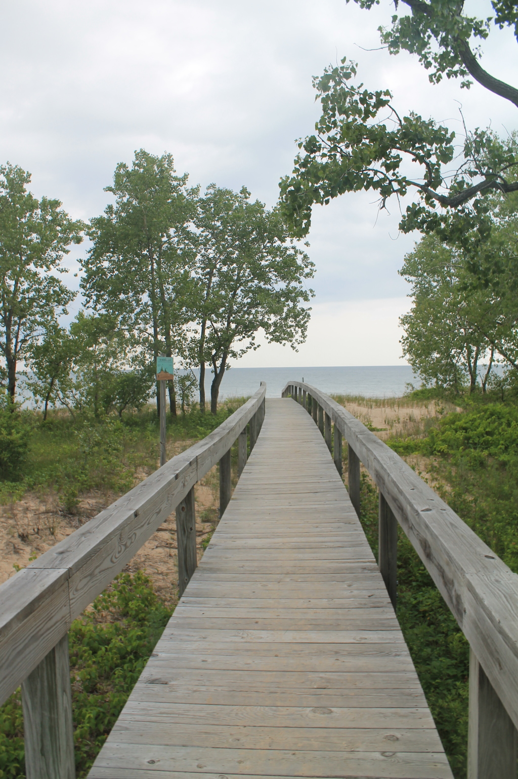 Photo: Boardwalk