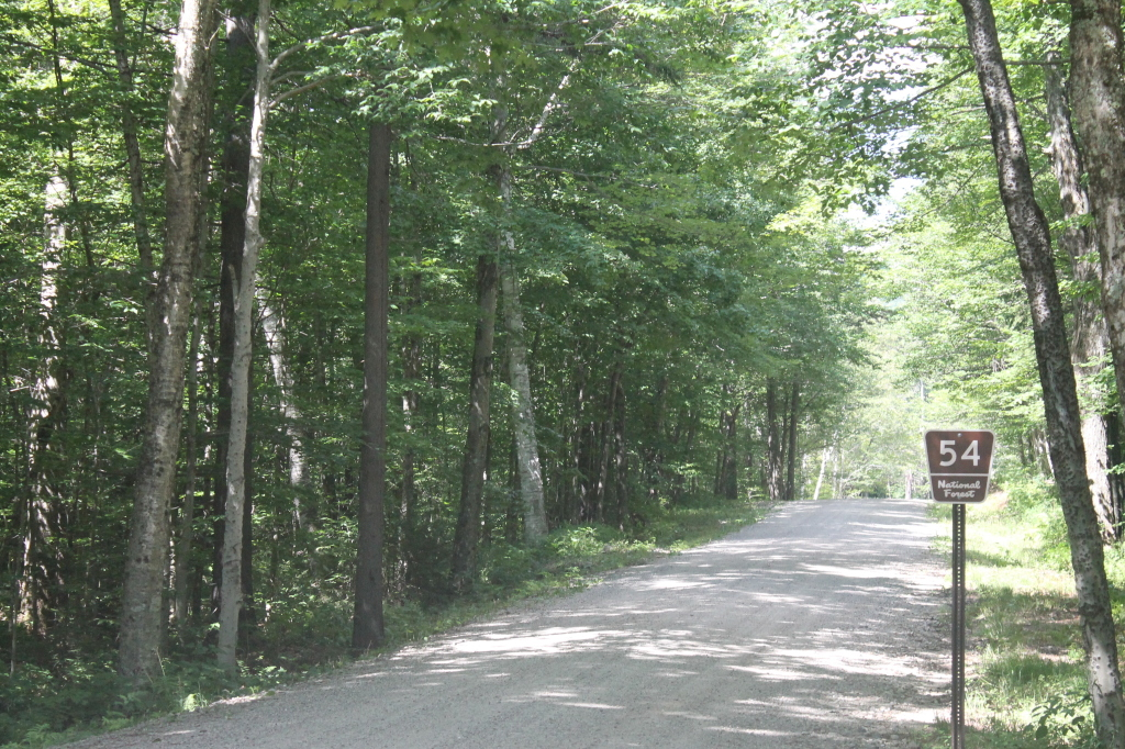 Photo: Entrance to Natural Turnpike (Forest Road 54)