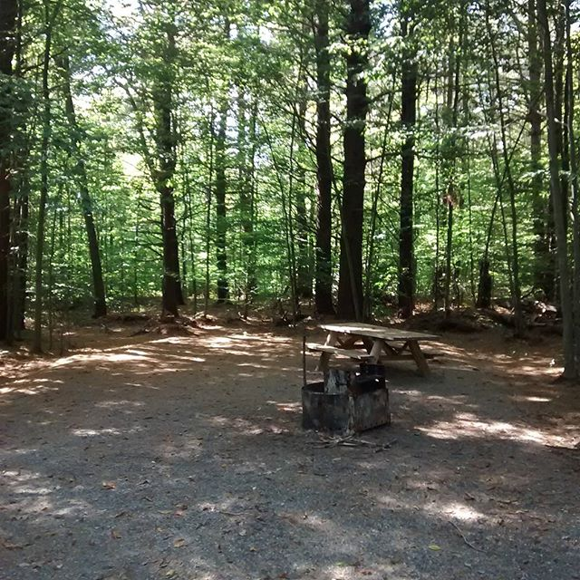 Photo: The new @NYSDEC campsites at Otter Creek are  super nice.