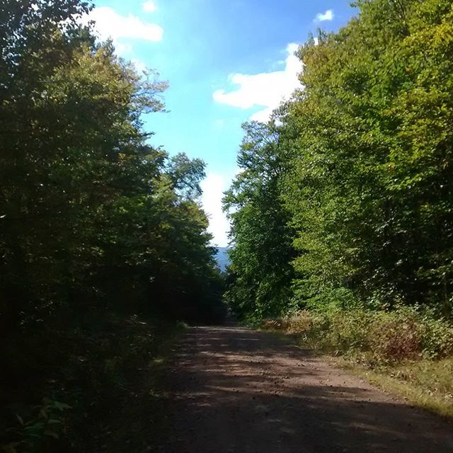 Photo: Eatonville Road from Camp, View of Tug Hill Plateau