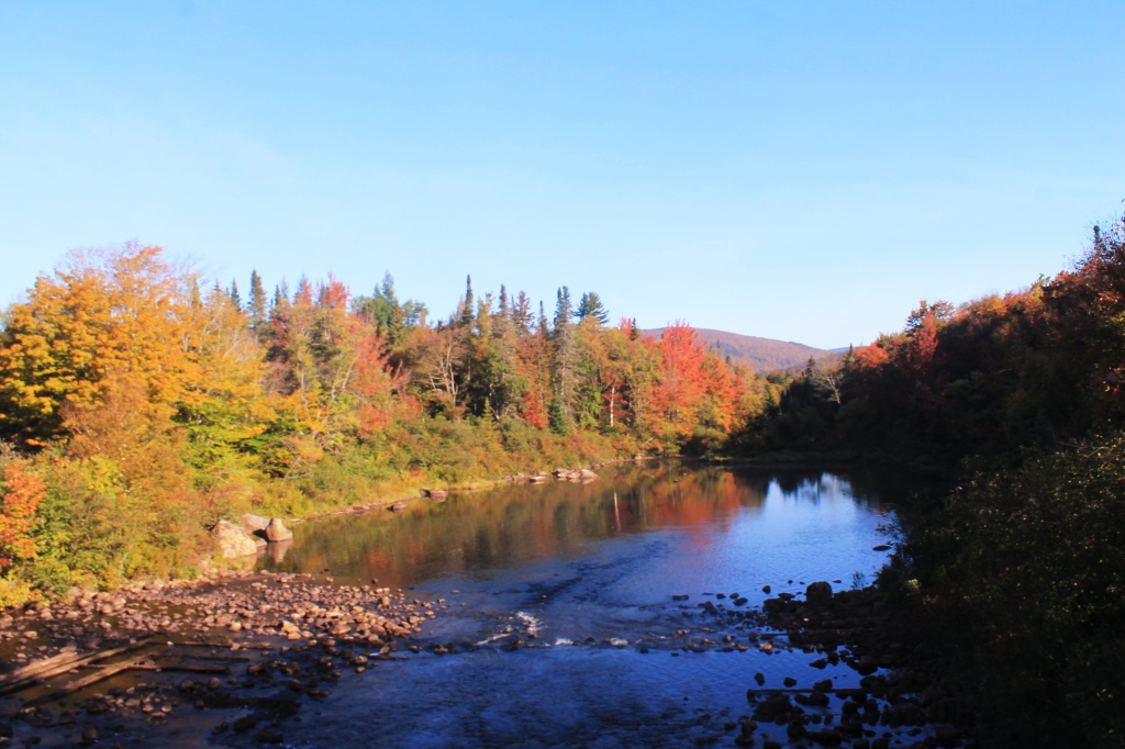 Photo: Cedar River from the Dam