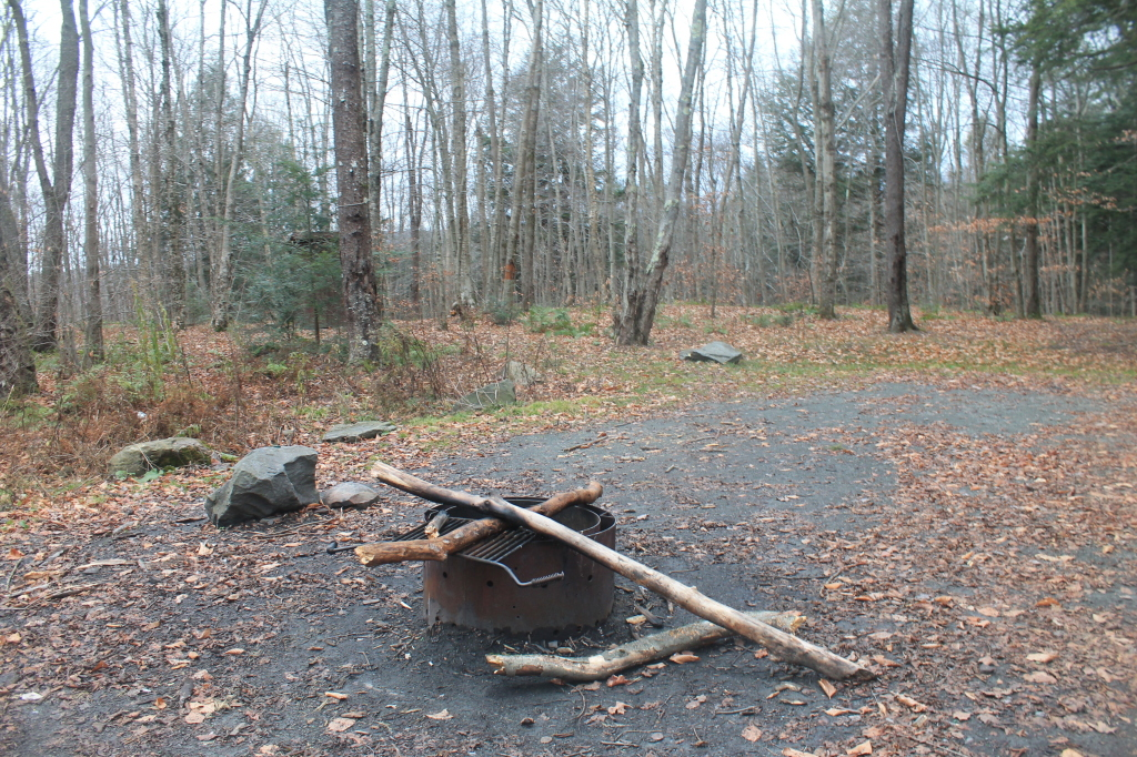 Photo: Accessible Campsite Along Russell Brook Road