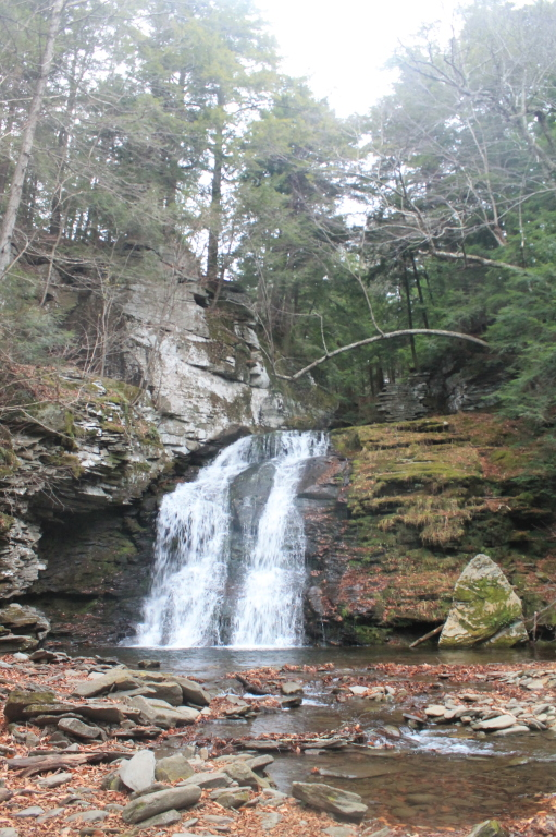 Photo: Russell Brook Falls – Lower Falls