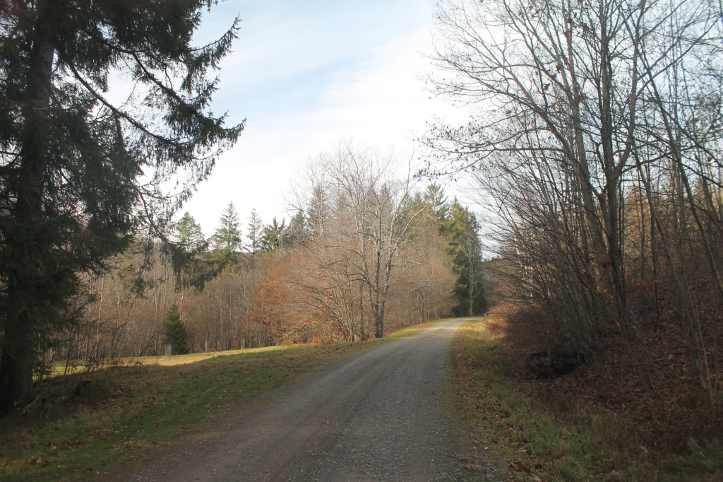 Photo: West Trout Brook Road