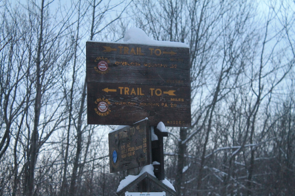 Photo: Snow Covered Sign