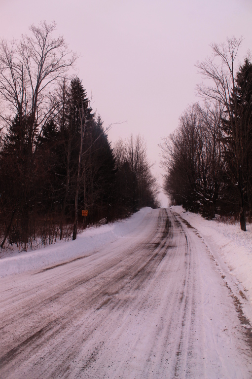 Photo: Along Bradt Hollow Road