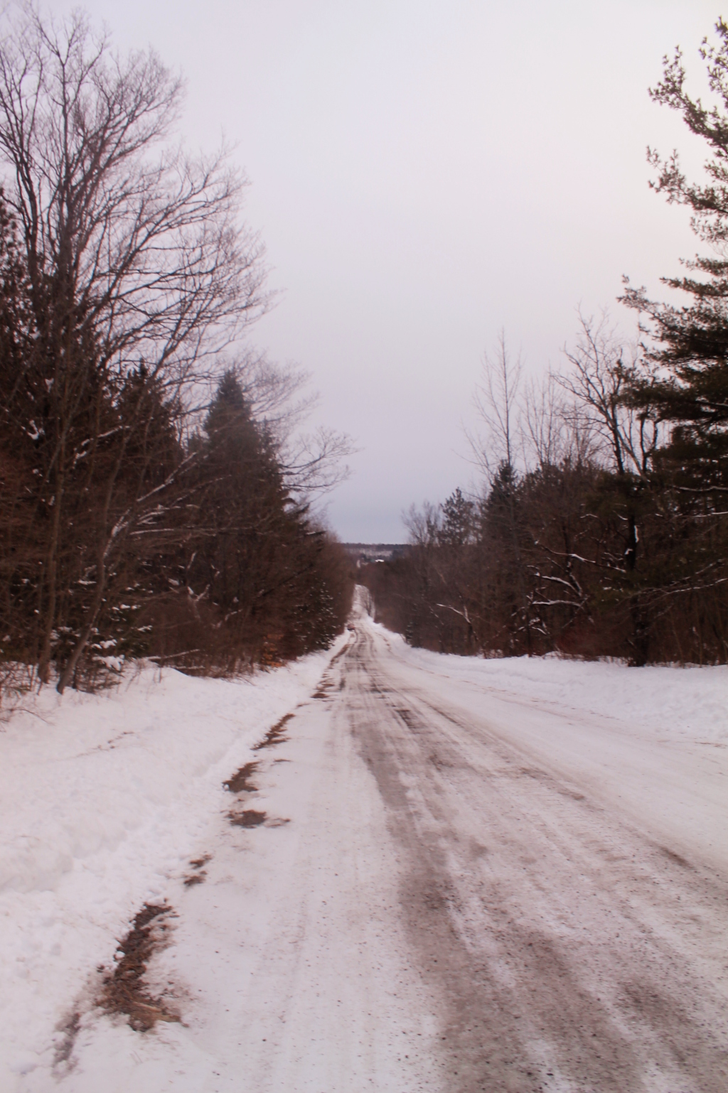 Photo: Bradt Hollow Road