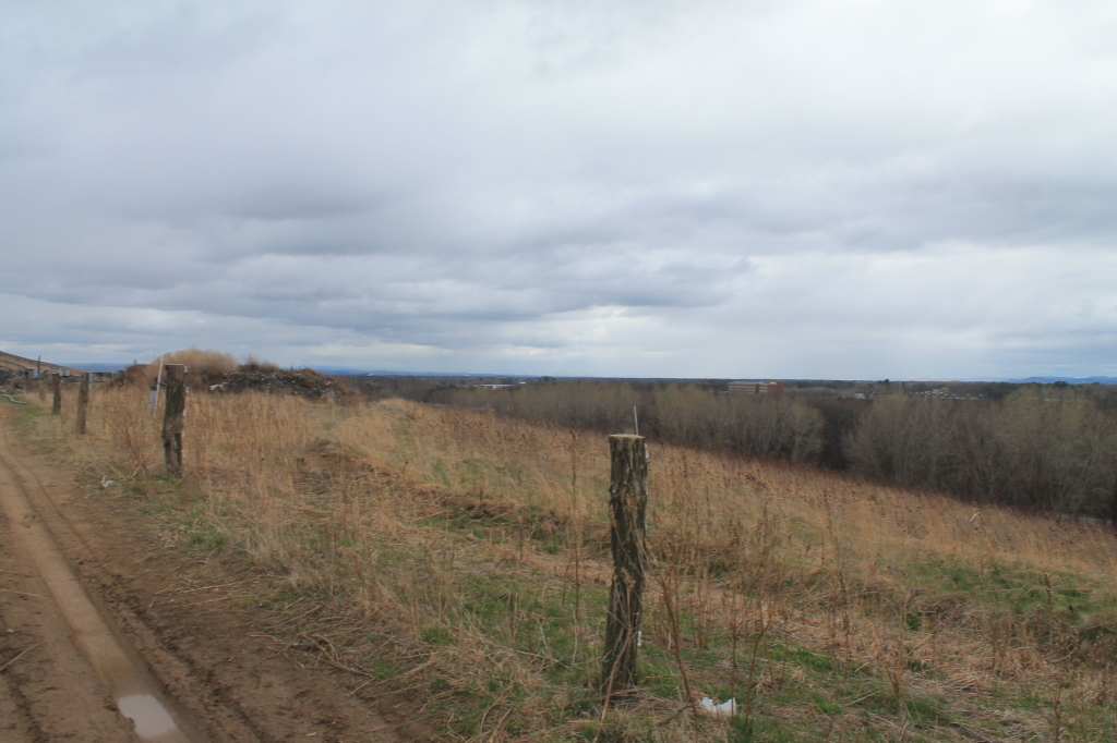 Photo: Towards Guilderland