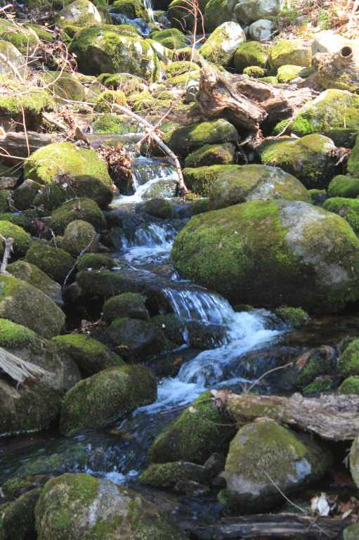 Photo: Waterfall Along the Trail